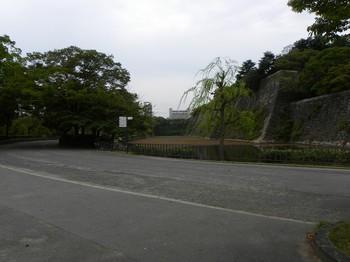 内堀と草に埋もれた空堀.jpg