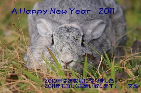 so-netweb年賀状2011.jpg